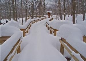 LOTC-walkway